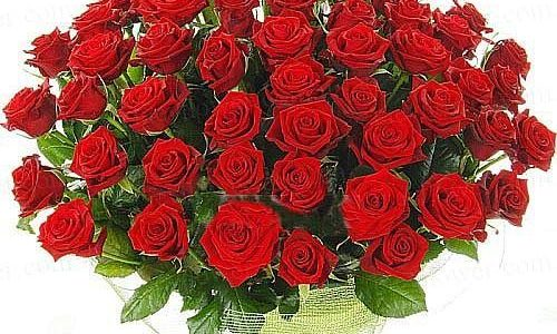 Поздравляем Николая Ильича Иванаева с Днем рождения!!!