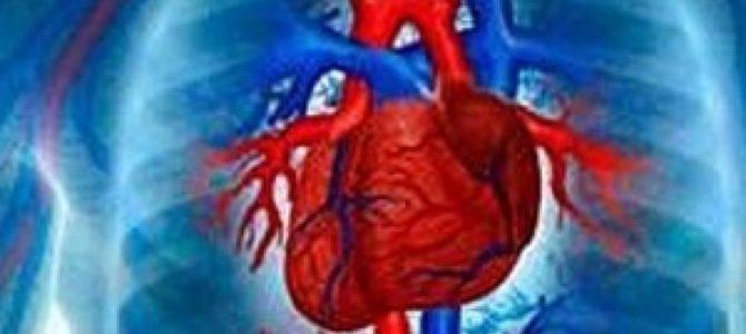 Начало цикла «Особенности строения и функционирования сердечно-сосудистой системы у детей» 36ч (36 баллов по НМО) с 22.05.17