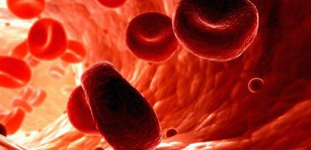 Начало цикла «Диагностика редких форм анемии» в рамках НМО  С 04.06.2018