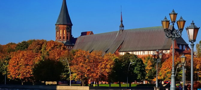 Балтийский конгресс «Янтарная осень» посетили 2440 человек из 155 городов России!